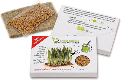 Superfood Weizengras-Saatset